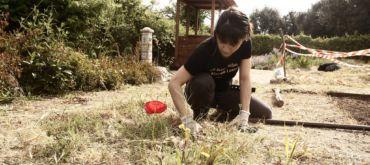 Percorsi tra orti, parchi e giardini - L'evento del Municipio V per il progetto del Servizio Civile