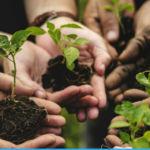 coltiviamo agricoltura sociale 2018