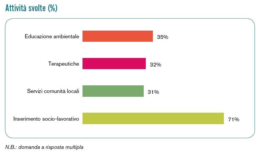 Grafico sulle tipologie di attività svolte