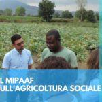 Il rapporto sull'agricoltura sociale