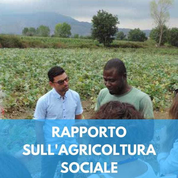 Rapporto sull'agricoltura sociale in Italia. I dati in sintesi