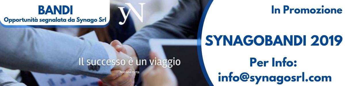 SynagoBandi, il servizio Infobandi 2019 di Synago srl